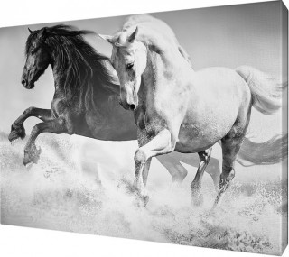 картина на холсте 25х35 Н540