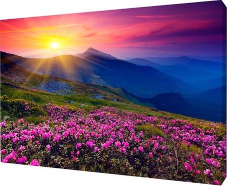 Картина на холсте 40х50 д920